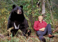 Lynn Rogers, Ph.D. Is A Renowned Bear and Wildlife Researcher And Award-Winning Photographer