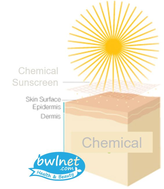 bwlnet-chemical-sunscreen