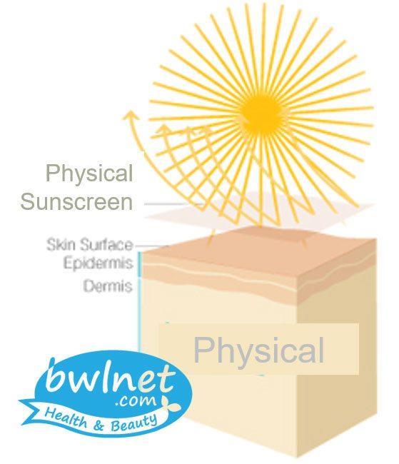 bwlnet-physical-sunscreen