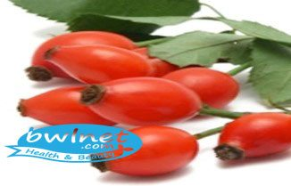 bwlnet-rose-canina-seed-extract