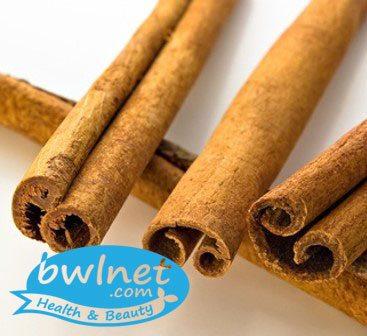 bwlnet-willow-bark