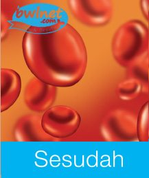 bwlnet-darah-sesudah