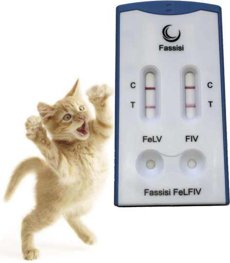 Cat Rapid Test / For Leukemia / Virus / Serum