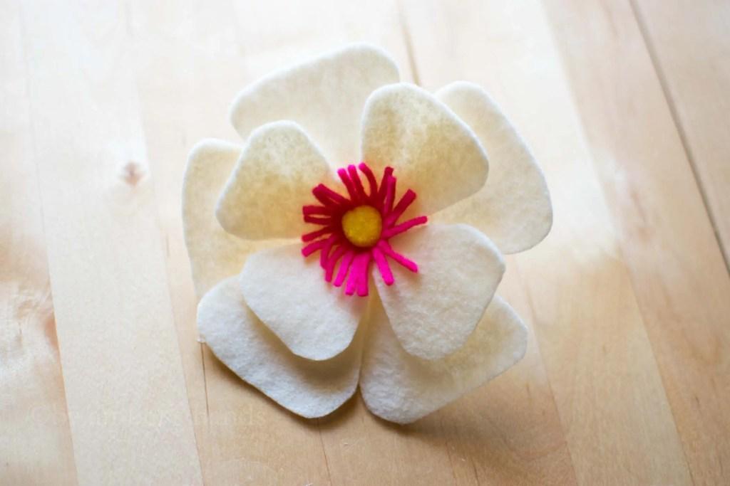 Felt anemone