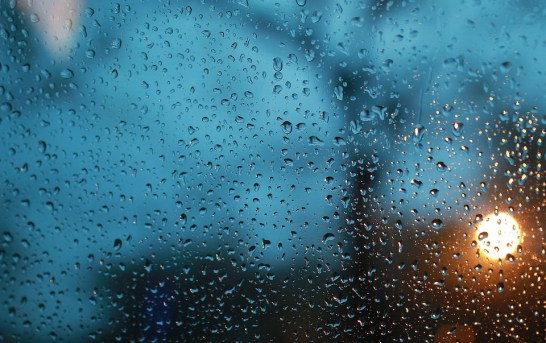 Dotační program dešťovka může zachránit planetu