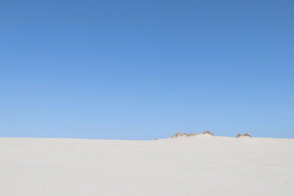 Råbjerg Mile: Billeder fra vores smukke nordiske ørken
