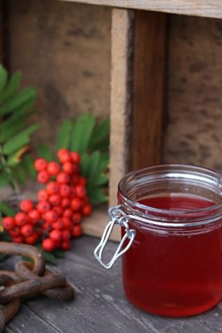 Gelé med rønnebær - opskrift på hjemmelavet gelé