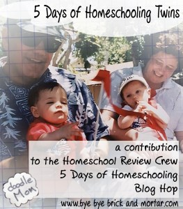 5 Days of Homeschooling Twins