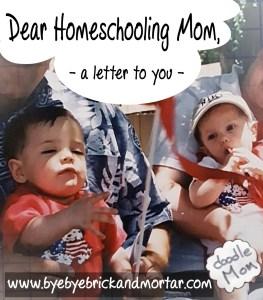 Dear Homeschooling Mom