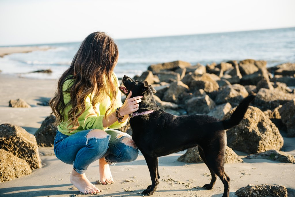 Sullivan's Island Folly Beach Charleston Beaches Dog puppy black lab border collie asos sweater madewell jeans sunset beach east coast low country holy city by hilary rose