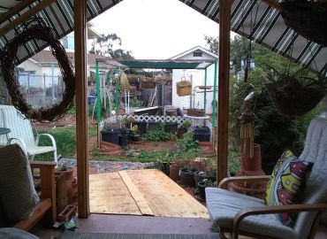My wheelchair view of my garden from my back porch.