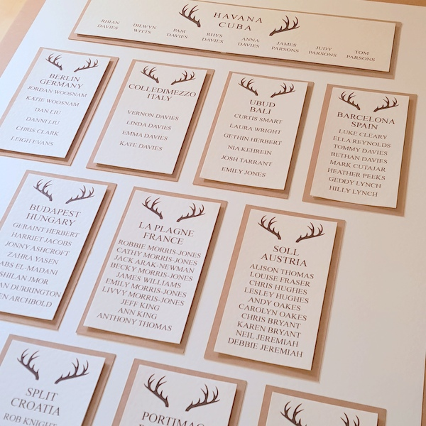 antlers wedding table plan