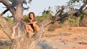 tree climbing, limpopo, by life connected, koro river camp