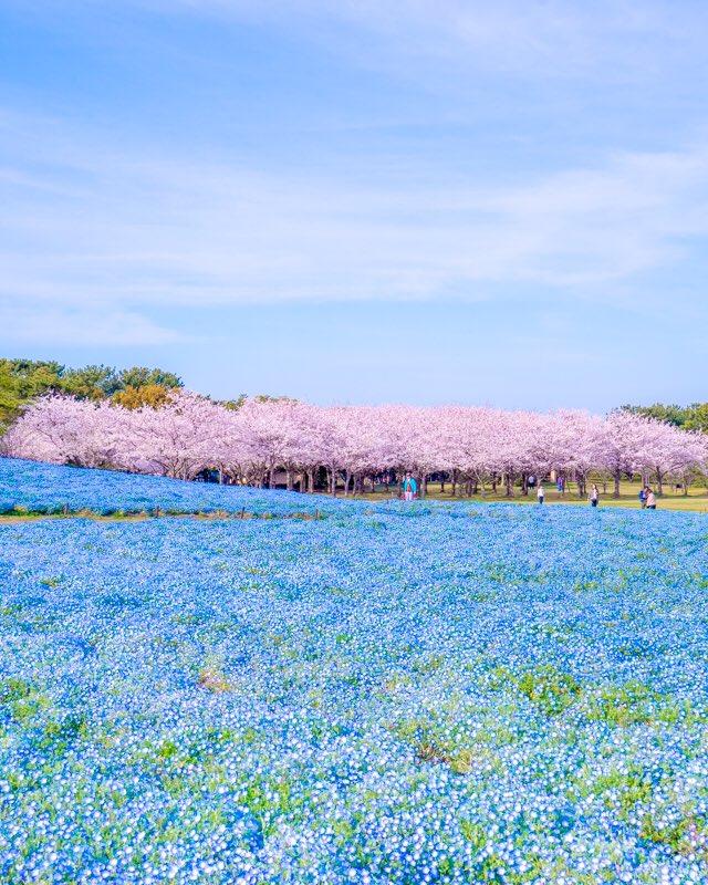 Du lịch Fukuoka