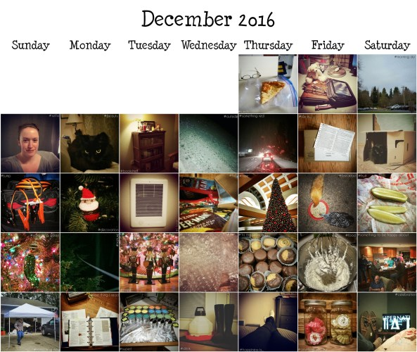 2016-december-photo-a-day