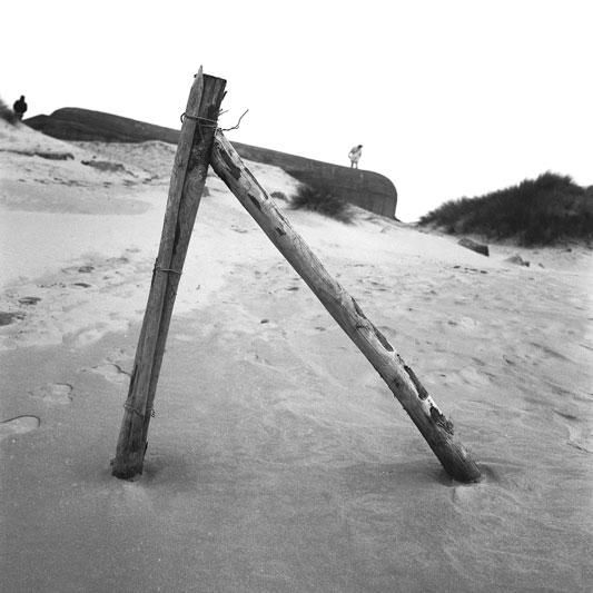 Dans-les-Dunes-de-Bray-Dunes-002