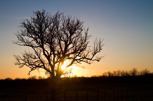 Langeais-sunset