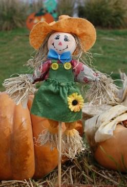 scarecrow-379902_1280
