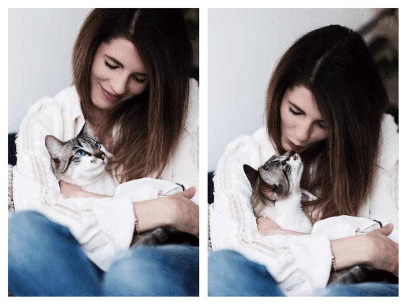 Arya adoption chat