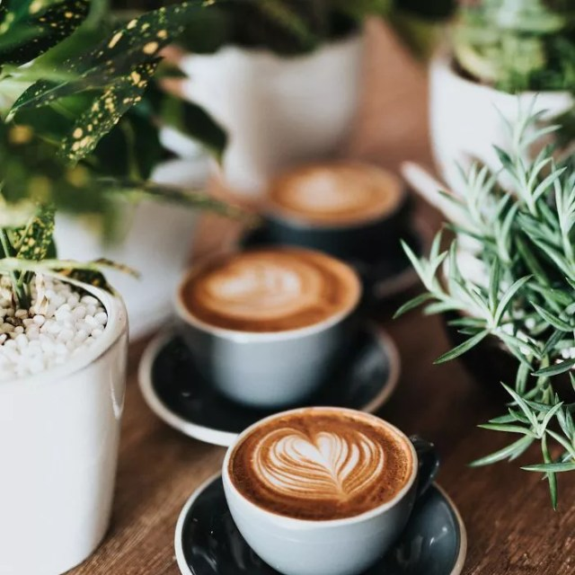does coffee cause acid reflux?