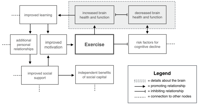Figure 1. Positive Causal Well-being Network. Exercise promotes outcomes in the brain that promote other positive outcomes outside the brain. Similarly, exercise reduces negatives outcomes that would reduce certain positive outcomes. This is adapted from causal network models found in Cotman, Berchtold, and Christie 2007.