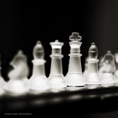 Beyond Chess: Go, Shatranj, and Xiangqi