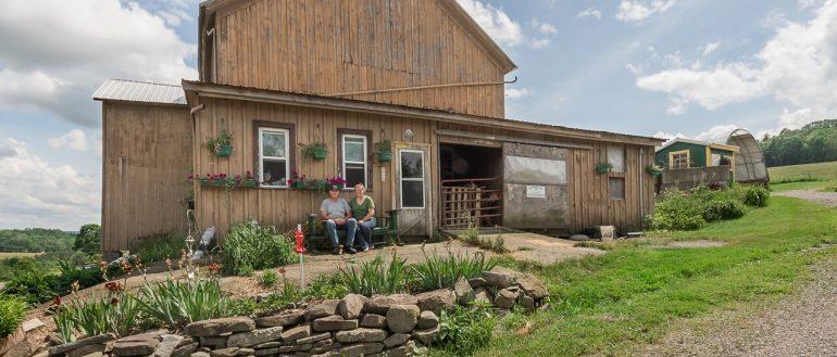 Antique Valley Farm header - Antique Valley Farm