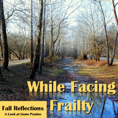 fall reflections - while facing frailty