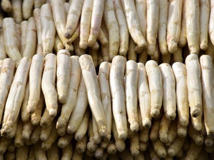 witte-asperges