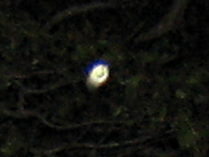 This is a crash-zoom to the center orb from the picture to the left. Is it the profile of a face with a Pilgrim headdress, or just a weird reflection in the dark cemetery?