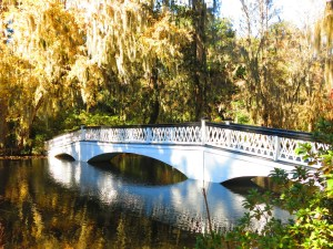 The most painted bridge in the U.S. It's a landscape artist's dream!