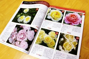 京成バラ園カタログ