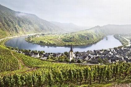 Mosel_Weinregionen (2)