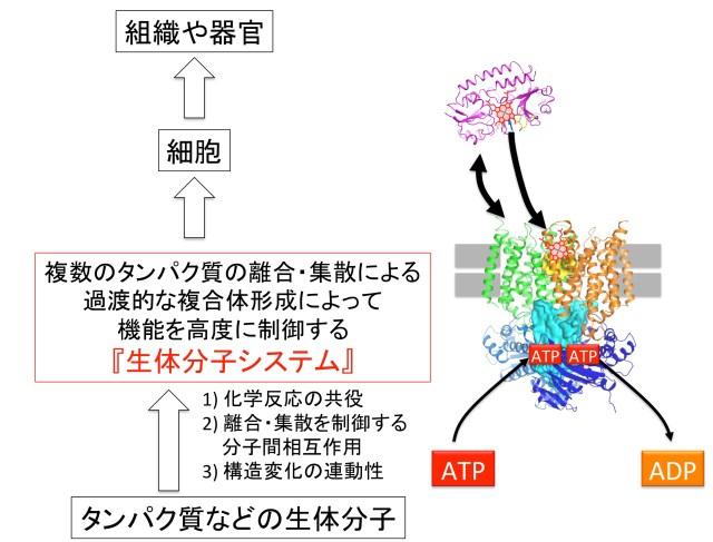 図2ver4
