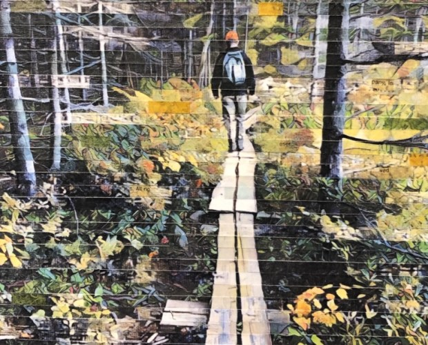 Hiker in the Woods Mixed Media