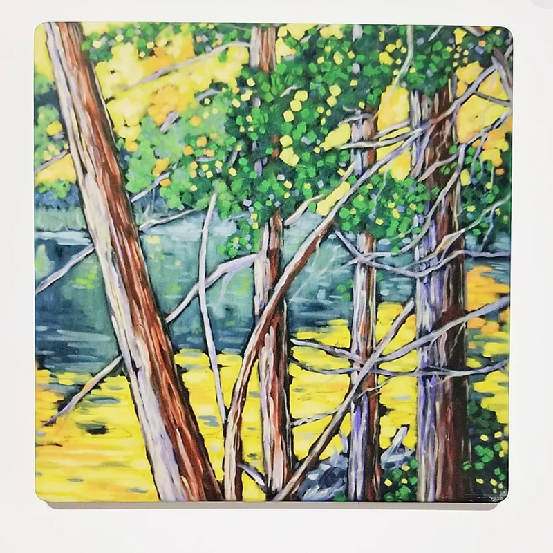 Natural Wonders Coaster by Christi Dreese