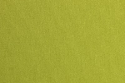 Lime Green Fabric (31)