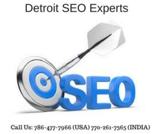 Detroit Seo Experts