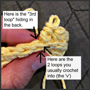 crochet in the third loop