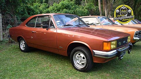 Opala 1980 - Francisco Esteves
