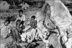 An aged and abandoned Muslim couple and their grand children sitting by the the roadside on this arduous journey.
