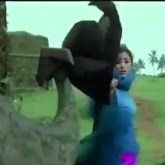 In one of the many cheesy song videos that accompany the movie Bombay, the Muslim girl is seen running away, only to have her burkha entangled in a tree branch. She keeps on running, leaving the rather good burkha behind. In reality, the movie should have come with a