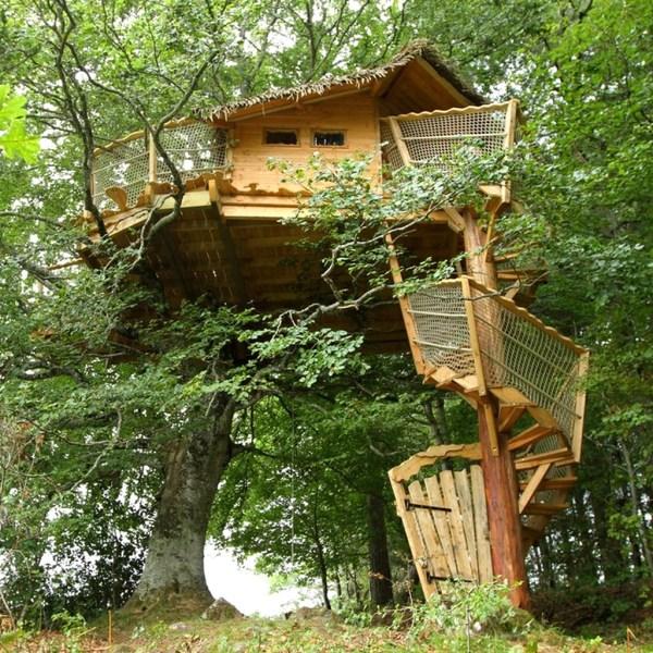 Cabane dans les arbres Cantal