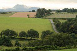 Notre campagne avec vue sur le Puy de Dôme