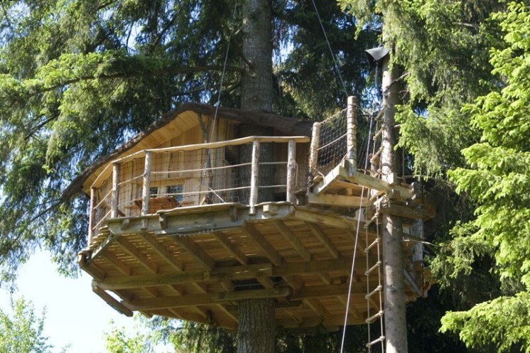 Située dans un douglas de 45 mètres de haut, l'échelle de corde et le baudrier vous permettront d 'accéder sur la terrasse de la cabane à 9/10 mètres du sol, sécurisé avec un baudrier et un stop chute.