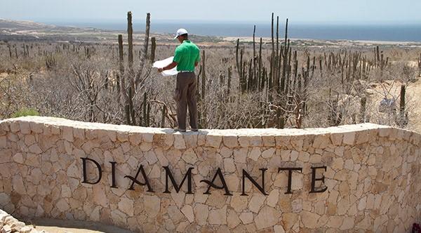 Tiger-Woods-Diamante