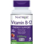 Diet & Nutrition-Natrol Vitamin B-12 Fast Dissolve 5000 Mcg – 100 Tablets