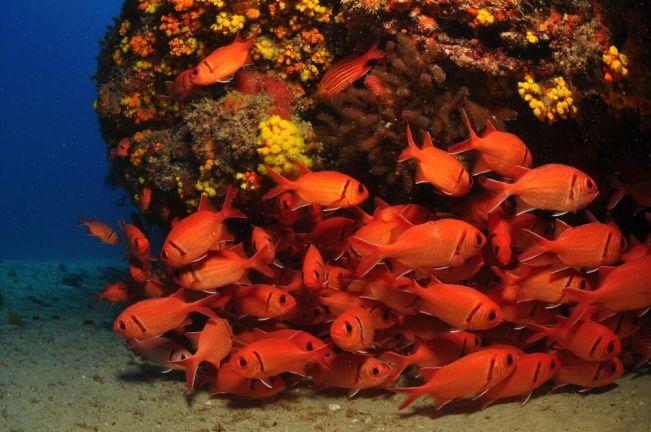 Cabo Verde Pontinha _0037