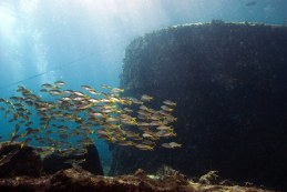 bolama Caldaia Cabo Verde _0004