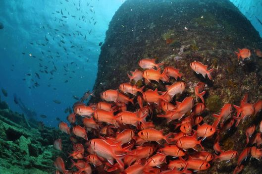 bolama Caldaia Cabo Verde _0005